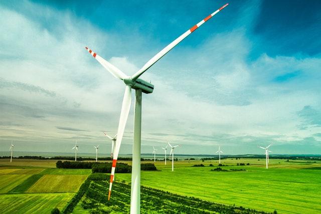Energetyczna przyszłość Polski. Czy Polska będzie drugą Islandią? - wiatraki w polu