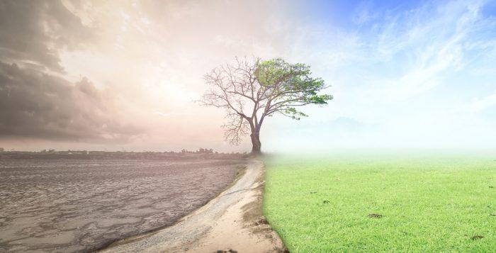 kryzys klimatyczny