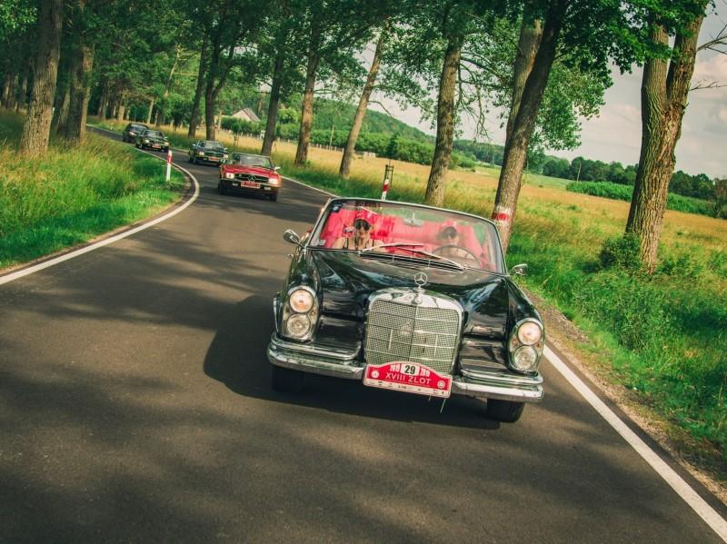 She's Mercedes na Pomorzu – spotkanie miłośniczek zabytkowych Mercedesów - auta jadę wąska, zalesioną drogą.